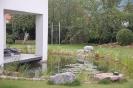 Hausgarten Teich_8