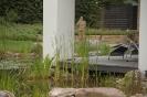 Hausgarten Teich_9